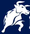BlackBull Markets Broker - Forex Low Minimum Deposit