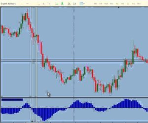 What is the Real Technique of Success in Forex?